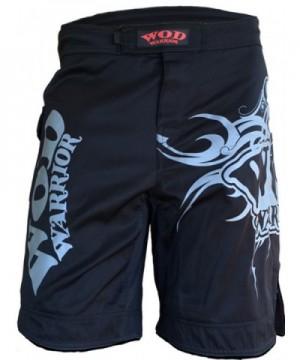 WOD Warrior Spartan 1 0 Crossfit